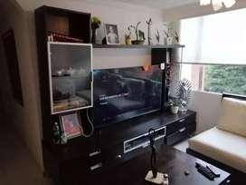 Vendo permuto mueble para entretenimiento barato