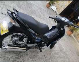 Moto suzuki  2013