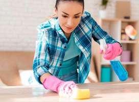 Busco empleada que ame los niños y cocine rico honesta agil buena presencia