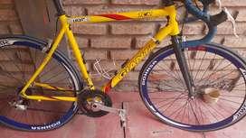 Vendo bici rutera giant