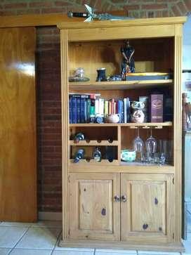 Biblioteca con bodeguita