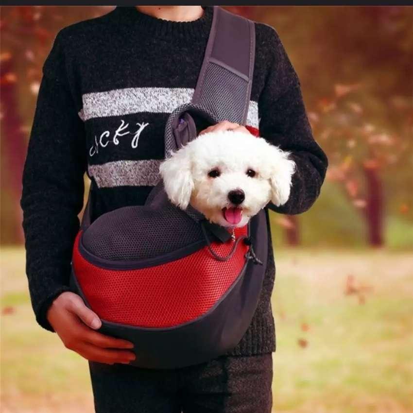 Vendo 2 mochila para perro cada una es el precio 0