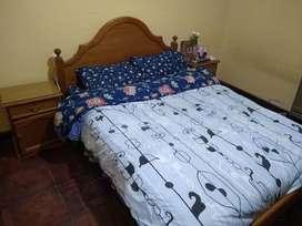 Vendo Juego de Dormitorio con colchón Inducol.