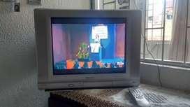 Televisor y dvd karaoke