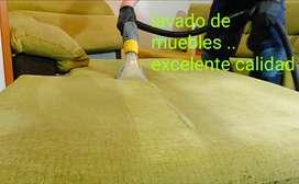 Limpieza y desinfección a vapor para vehículos y hogar