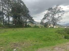 Conocoto, venta, Terreno, 1200 m2, frente total 78 m, cos 105