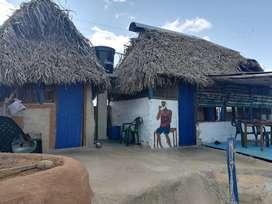 Cabaña en Dibulla