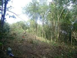 Terrenos en Río Ceballos