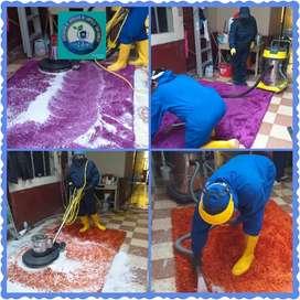 lavamos sus alfombras, recojido y entrega a domicilio.