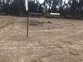 Lotes Cerca zona de esparcimiento Girasoles