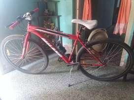 Vendo bicicleta Milano.