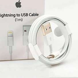 Cable usb original iphone + protector