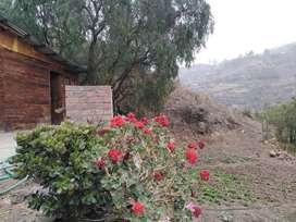 Alquilo cabaña rustica excelente vista naturaleza
