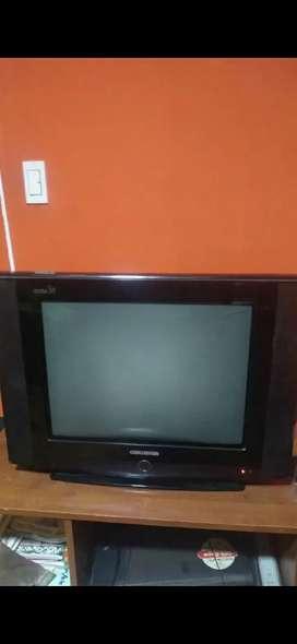 Vendo televisor convencional