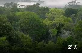 Terreno Agrícola en Ocasión en Atalaya - Ucayali