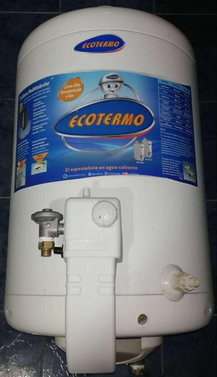 Termotanque Alta Recuperación Ecotermo 50lts Ep53cl 0