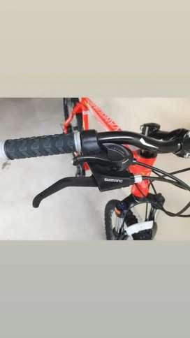 Bicicleta MTB Rodado 26 San Mar