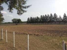 Campo de 110 hectareas en villaguay, Entre Rios