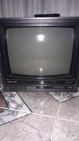 Televisor Color 20