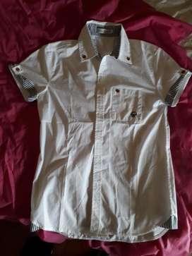 Camisas de Varon