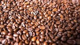 Café en pepa
