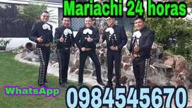 Mariachis en el valle fiestas