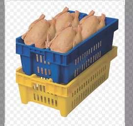Pollos don jimmy