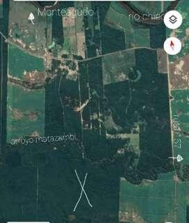 Vendo 207 hectareas