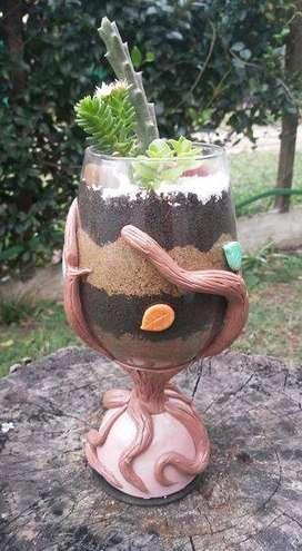 Terrario en copa
