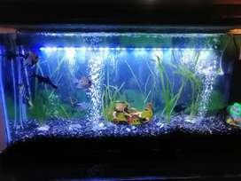 LAMPARA SUMERGIBLE LED para acuario