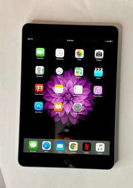 iPad Mini Silver Black 16GB