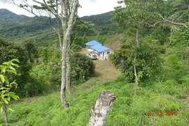 Vendo Finca en La Vega - Cundinamarca