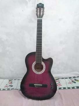 Vendo guitarra electroacústica freeman