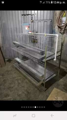 Jaulas de gallina 24 aves desarmables envios a provincias