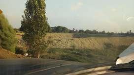 En venta terreno agricola prado- chincha