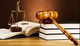 Asesorías en Derechos de Petición