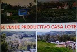 SE VENDE PRODUCTIVO CASALOTE EN VENTAQUEMADA  SOBRE AUTOPISTA BOYACÁ - TUNJA A ORILLAS DE LA CARRETERA