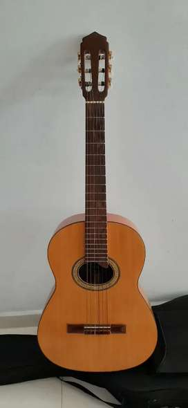 Guitarra acustica profesional