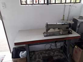 Maquina industrial  plana negociable