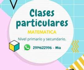 Clases particulares nivel primario y secundario.