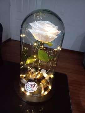Rosa de la bella y la bestia (preservada)