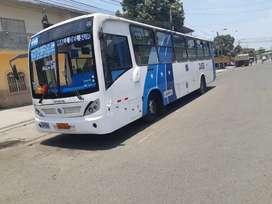 Bus urbano