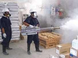 Servicio de fumigacion vivienda alimentos industrial hogar plagas insectos cucarachas roedores
