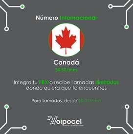 Número Internacional Voip - Canada - Telefonía Ip