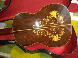 Guitarra digiorgio #36 brasilera