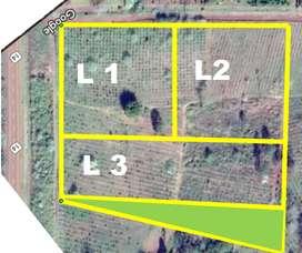 Vendo Lotes Zona Industrial en Leandro N Alem, Misiones.sobre Ruta Nacional 14-km 854.