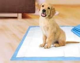 Training Pad Pañales para piso Pañal para perro Pañales absorbentes para piso Entrenamiento