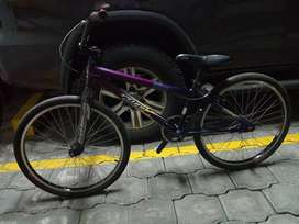 Bicicleta BMX bicicross crucero aro 24 Crupi Answer Redline