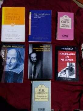 Vendo lote de libros de literatura usados