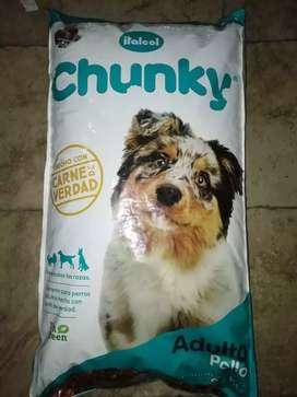 Chunky adulto pollo